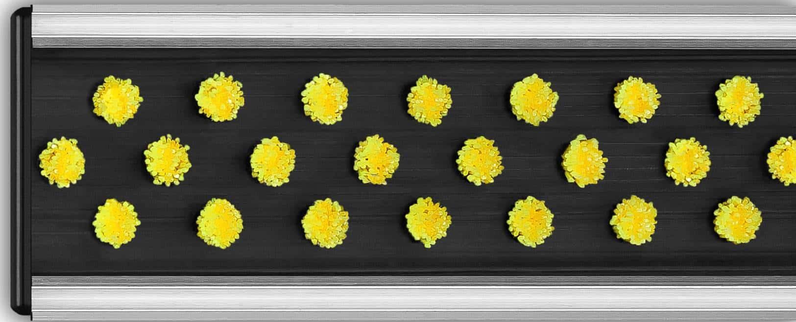 Wycieraczka aluminiowa-szczotkowa_żółta